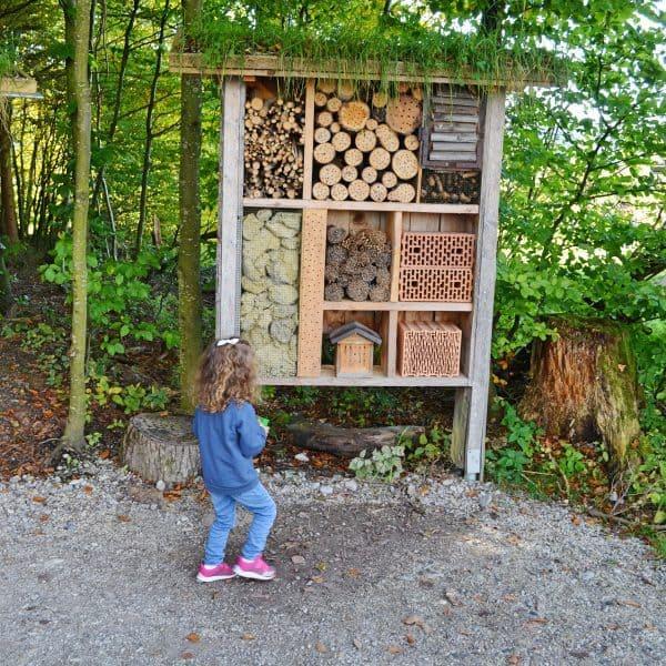 München Waldtierpark Aying, Familienausflug, Ausflug mit Kindern Bergtierpark, Spielplatz