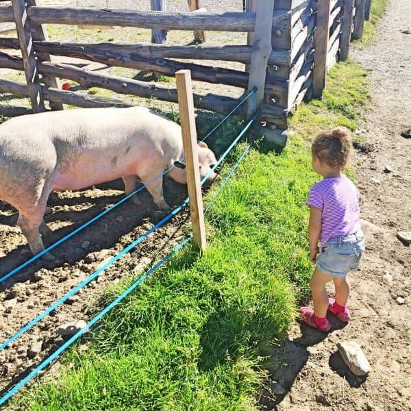 Wanderweg Ultental Wandern mit Kindern Urlaub mit Kindern Italien mit Kindern, Spielplatz