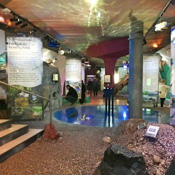 München mit Kind Jagd- und Fischereimuseum in der Innenstadt