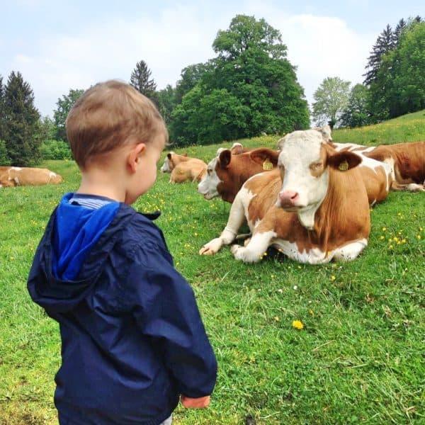 Käser Alm Wandern mit Kind
