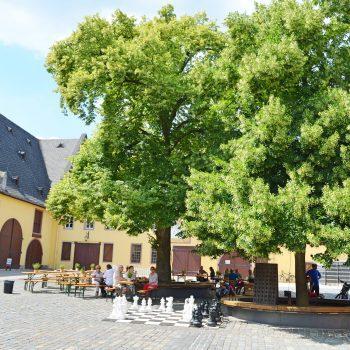 Schloss Vollrads mit Naturpfad für Familien, recommended by the urban kids