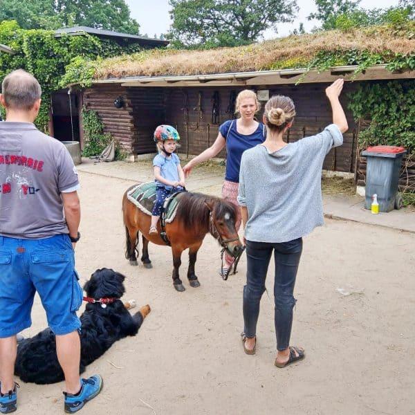 Kinderfreundlicher Reiterhof Niendorfer Gehege in Hamburg, Ponyreiten mit Kindern