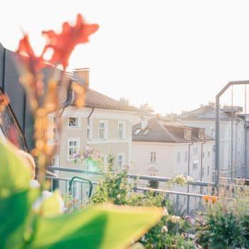 Dachterrasse im familienfreundlichen Hotel Auersperg in Salzburg
