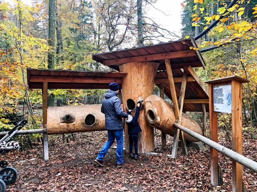 Walderlebniszentrum Grünwald Familienausflug München; goldener Herbst