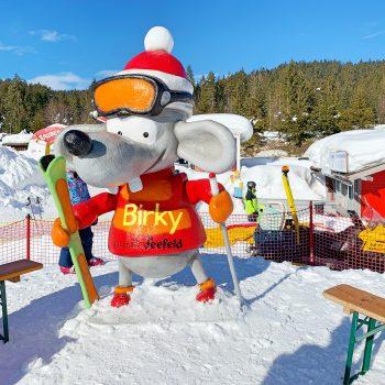 Kinderfreundliches Familien-Skigebiet in Seefeld in Tirol am Birkenlift