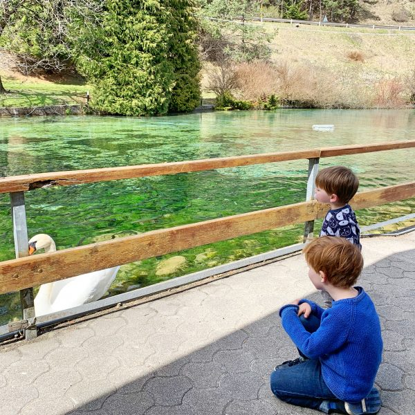 children-friendly restaurant Rio Argento in northern Italy, best freshest trout