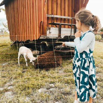 Familienausflug zum WELEDA Erlebniszentrum - Tiere erleben mit Kindern