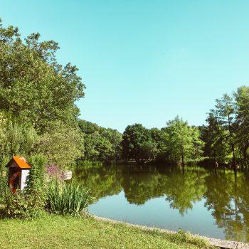 Westpark in München mit Kind - Ausblick auf den See