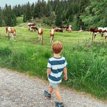 Familienausflug, Sommer Notfall Kit, Wandern mit Kind