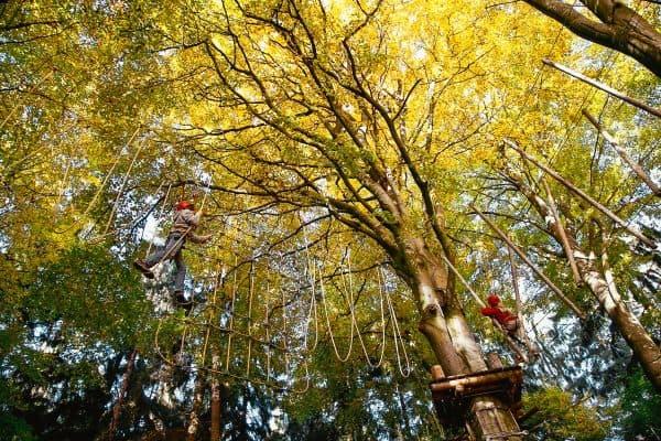 Waldkletterpark Oberbayern_Ausflugsziel für Familien in München mit Kind9