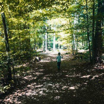 Wanderweg am Ostersee