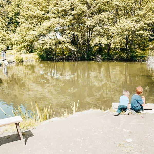 Angeln mit Kindern in Klagenfurt, Kärnten, Forellenhof Jorde