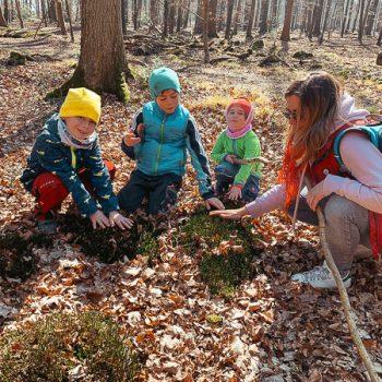 Geocaching mit Kindern bei Hamburg im Ruheforst Pinneberg