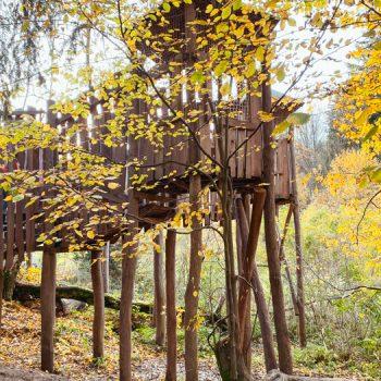 Weltwald - Ausflugsziel in München mit Kindern