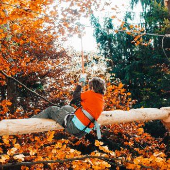 Seilpark Zürich mit Kindern - Kletterpark Schweiz