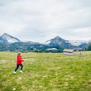 familienfreundliche Wanderung mit Kindern im Chiemgauer Land zum Heubgerg - Krokusblüte - Krokuswiese