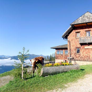 Familienurlaub auf der AlexanderAlm am Millstätter See in Kärnten, Österreich, the urban kids