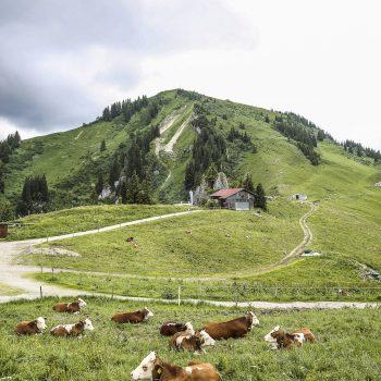 Wallberghaus-Wandern am Tegernsee mit Kindern