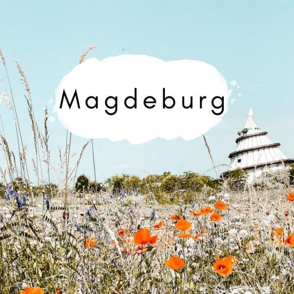 Magdeburg mit Kindern entdecken