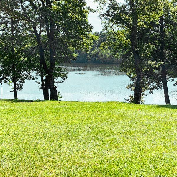 Ein Tag am Steinsee mit Kindern - Seen im Münchner Umland mit Kindern entdecken