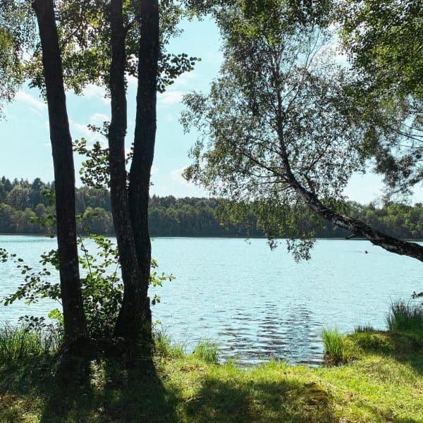 Baden am Steinsee mit Kindern im Münchner Umland